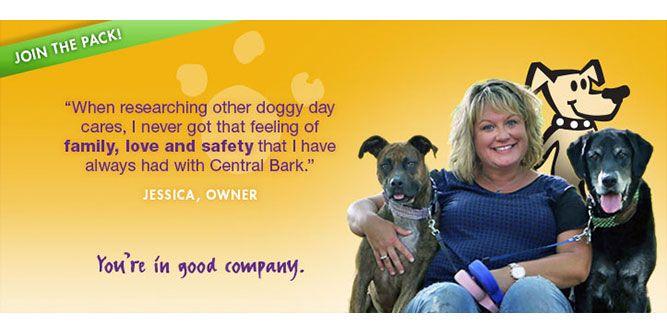 Central Bark Doggy Day Care slide 6