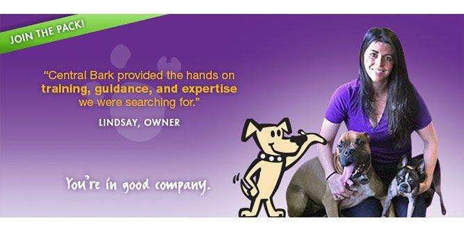 Central Bark Doggy Day Care slide 7