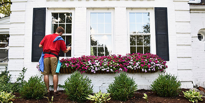 Fish Window Cleaning Services slide 7