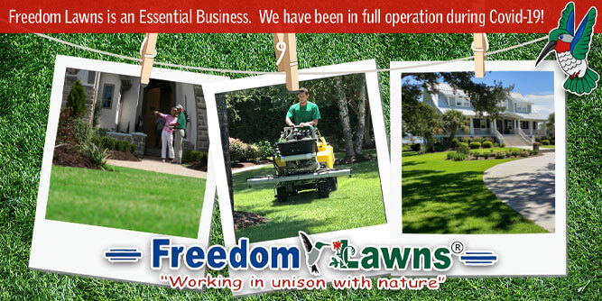 Freedom Lawns USA slide 1