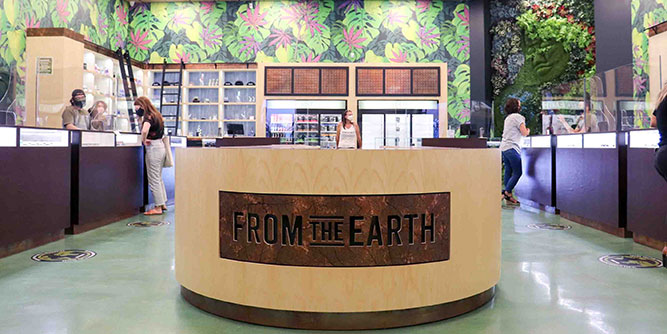 From The Earth - Recreational Dispensary slide 1
