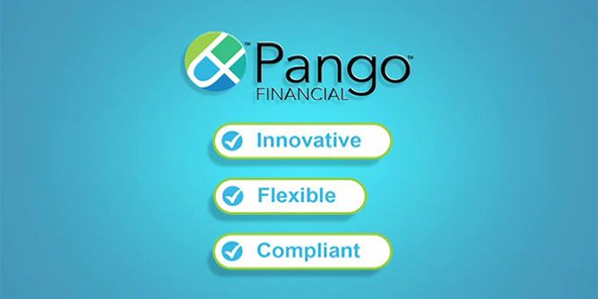 Pango Financial slide 5