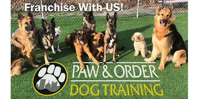 Paw & Order - Dog Training slide 3