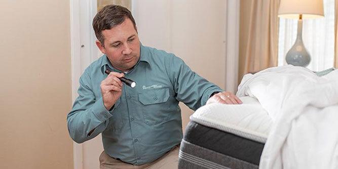 Pestmaster Services slide 4