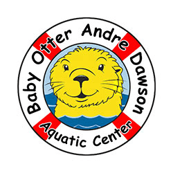 Baby Otter Andre Dawson Aquatic Center
